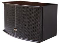 ADDK(安迪):10寸卡拉OK音箱K410