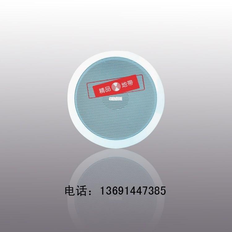 北京精品地带音响设备有限公司:CENTRE中电CSC-3110吊顶背景音乐会议吸顶音箱