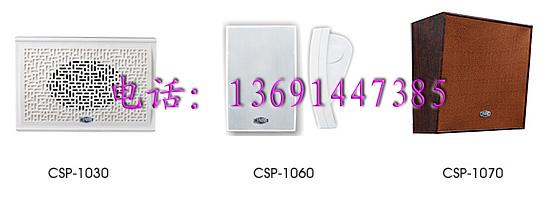 北京精品地带音响设备有限公司:中电CSP1030 1060 1070会议家用背景音乐壁挂音箱/定压音响