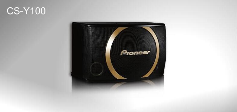 广州市亚歌电声设备有限公司:Pioneer/先锋CS-Y100 CS-Y120专业卡拉OK扬声器