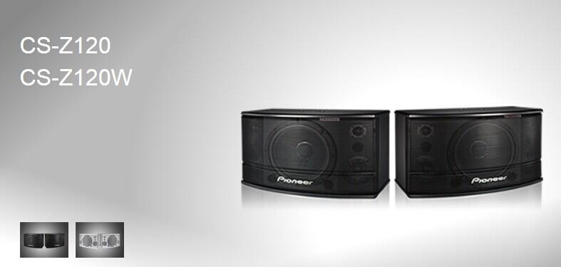 广州市亚歌电声设备有限公司:先锋CS-Z120卡拉OK音箱
