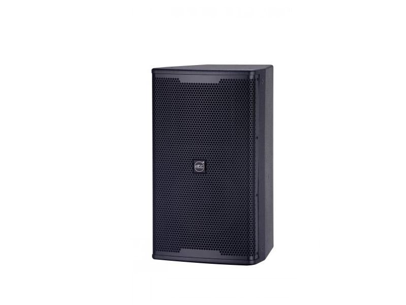 DT系列-10寸音箱