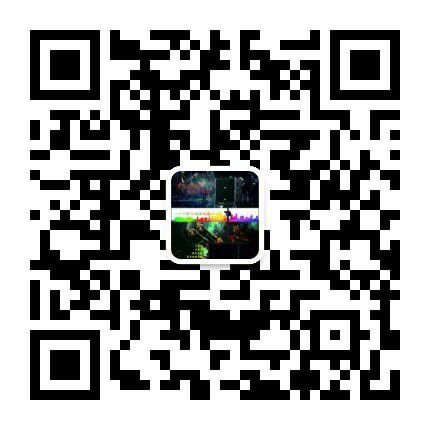 微信号:http://www.audio160.com/upfiles/wx/201753112931.jpg